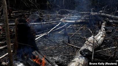 Amazonlar'daki Yangınla Mücadele Gücümüz Yok